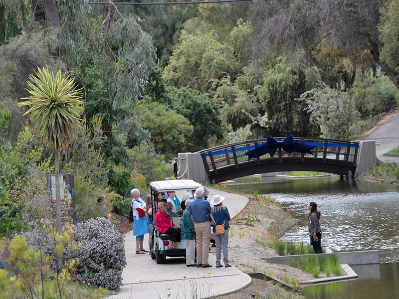 Waterway Steward and Learning by Leading™ student internship mentor Nina Suzuki shares the science behind a bank restoration project with key donors visiting the UC Davis Arboretum and Public Garden's Australian Collection.