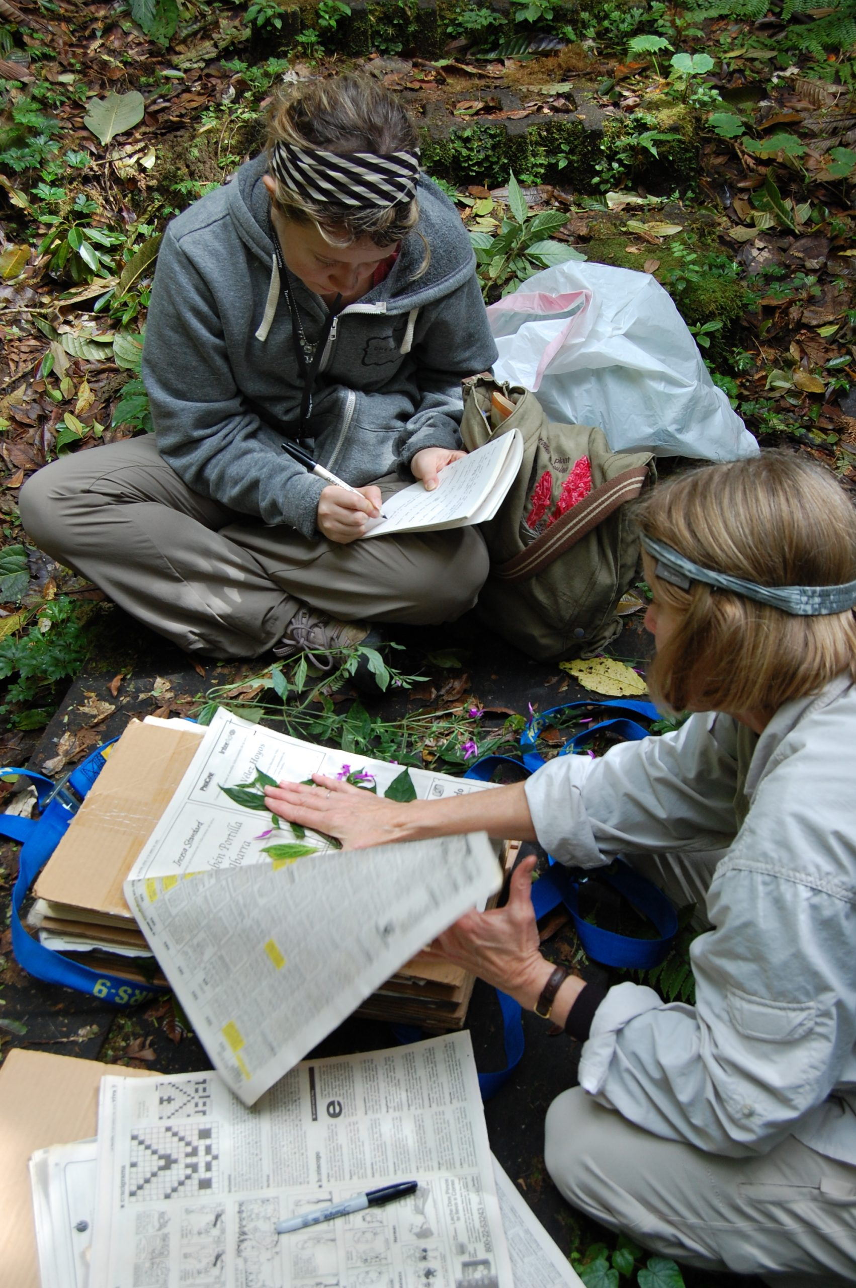In conjunction with Claremont Graduate University, Rancho Santa Botanic Garden educates graduate students. Here Lucinda McDade, Ph.D., helps doctorate student Carrie Kiel with her field work in Costa Rica. Upon graduating Carrie became a postdoctoral fellow at the garden.