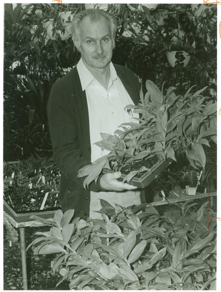Dr. Cal Dodson holds a tray of the very rare Ila epidendrum (Epidendrum ilense) seedlings, a species saved from extinction through maintenance of ex situ collections.