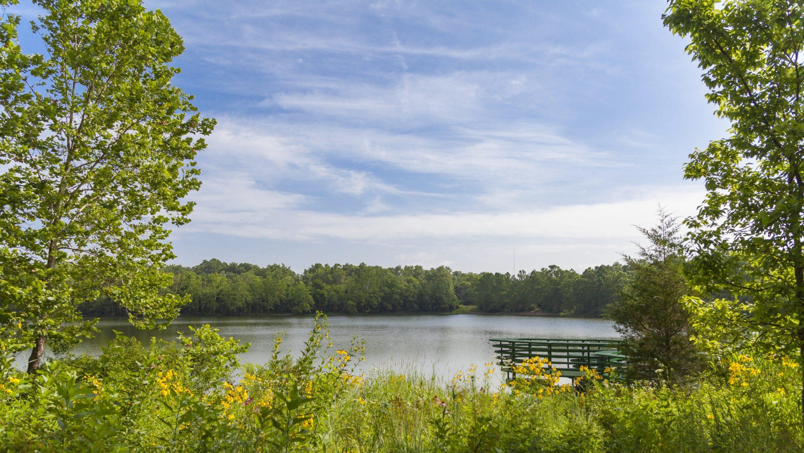 Lake at Newfileds.