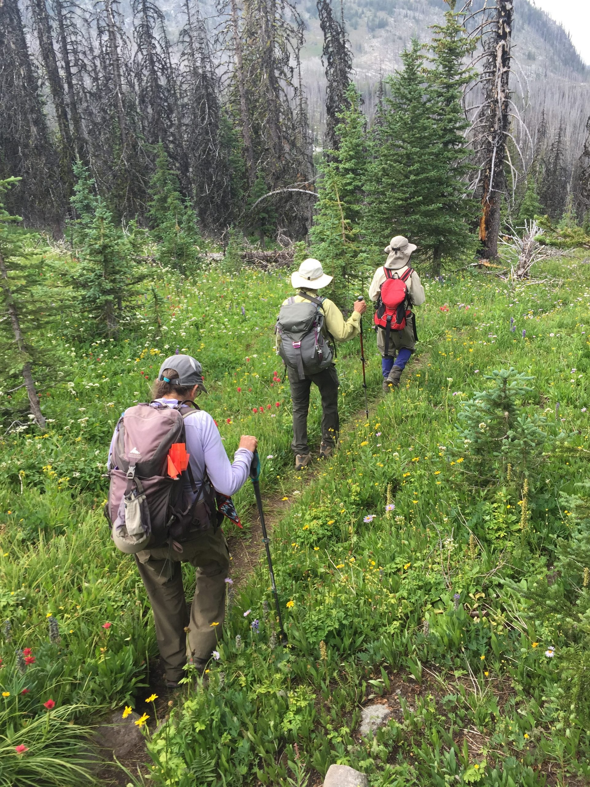 Rare Care volunteers hiking