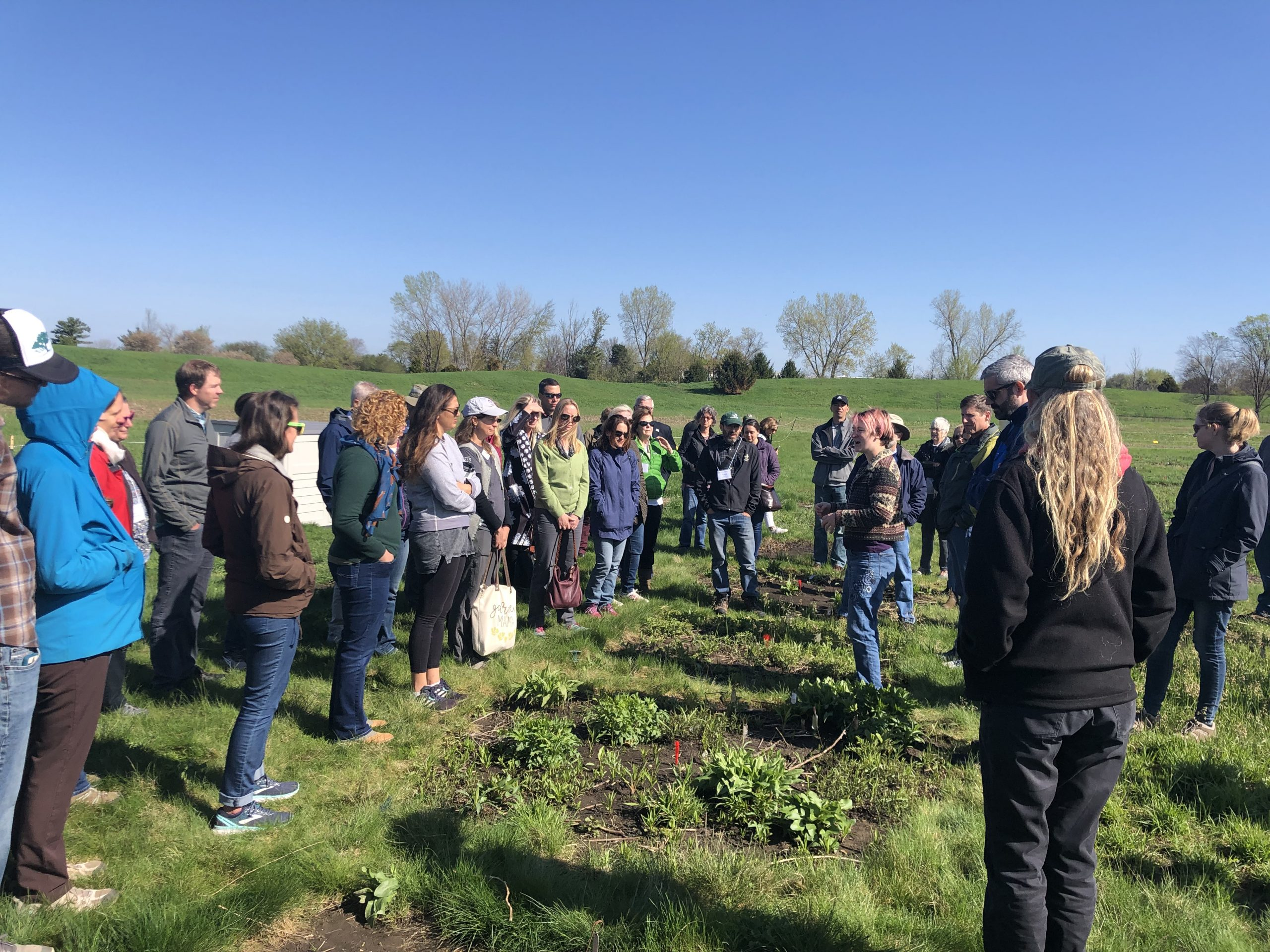 During Saturday's field trip, Morton Arboretum staff explained the complicated National Science Foundation funded prairie restoration experiment.