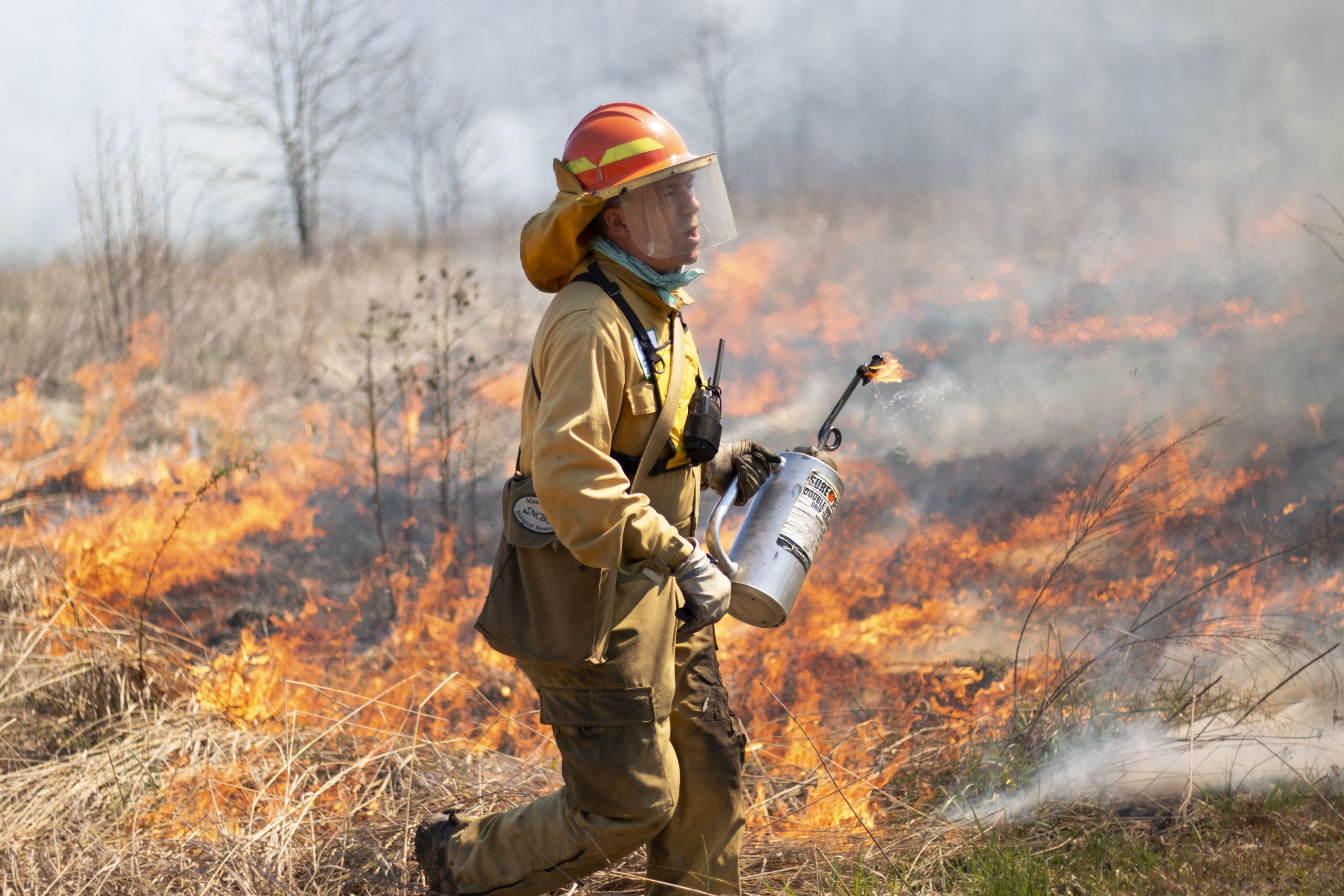 Prescribed fire is an important tool for land management on the NCBG lands Johnny helps manage. Photo: Alyssa LaFaro, UNC Research.