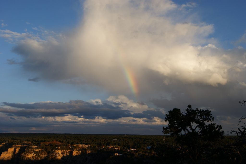 Rainbow over Joyce's field site in Arizona.