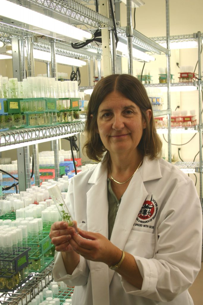 photo of Valerie Pence, Ph.D., Director of Plant Research, Center for Conservation and Research of Endangered Wildlife, Cincinnati Zoo and Botanical Garden