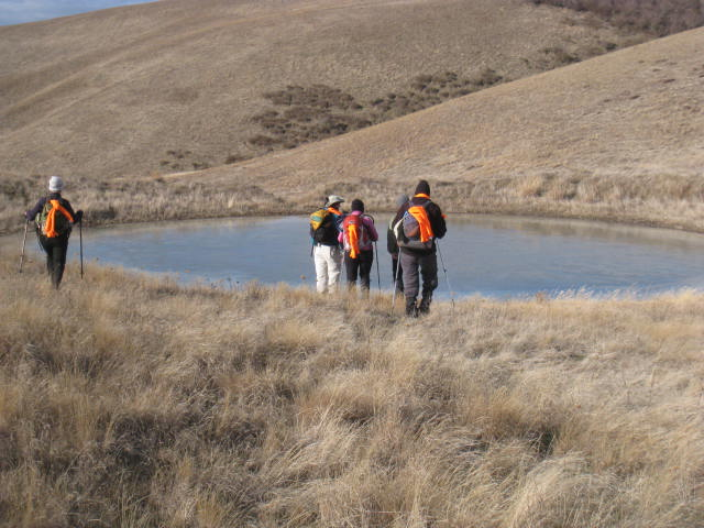 Volunteers survey for obscure buttercup at Dalles Mountain Ranch near the Columbia River.