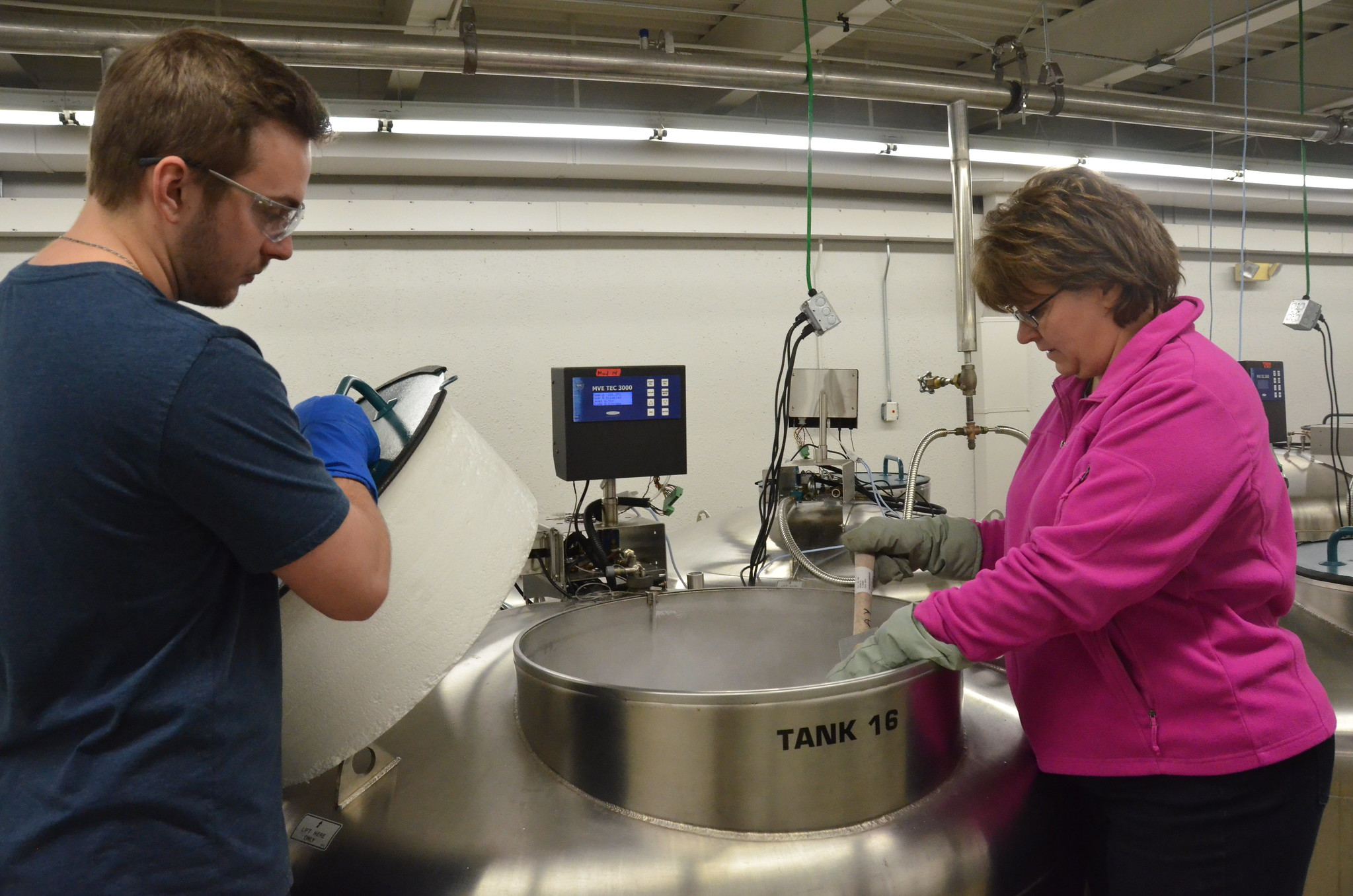 Image of Lisa Hill and Ryan Lynch checking samples at -176 in LN2 tank at NLGRP.