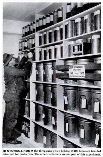 Image of seed storage room.