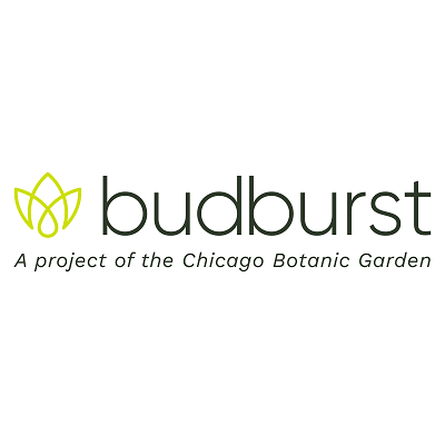 Budburst app logo