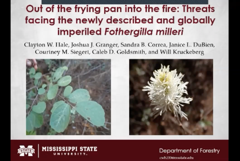 Screenshot of Out of the Frying Pan Into the Fire: Threats Facing the Newly Described and Globally Imperiled Fothergilla milleri