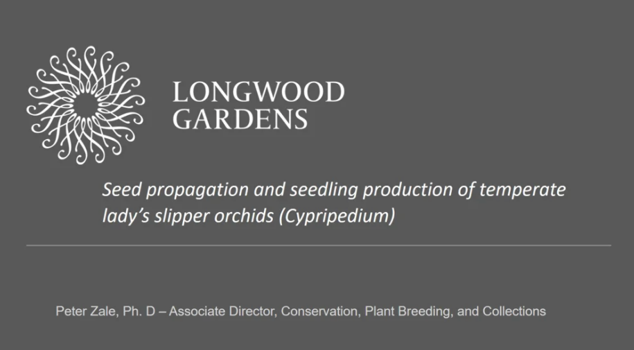 Screenshot of Seed Propagation and Seedling Production of Temperate Lady's Slipper Orchids (Cypripedium) video