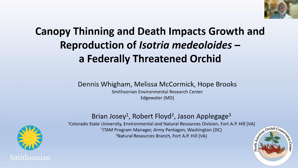 Screenshot of Canopy Thinning and Death Impacts Growth and Reproduction of Isotria medeoloides - a Federally Threatened orchid video