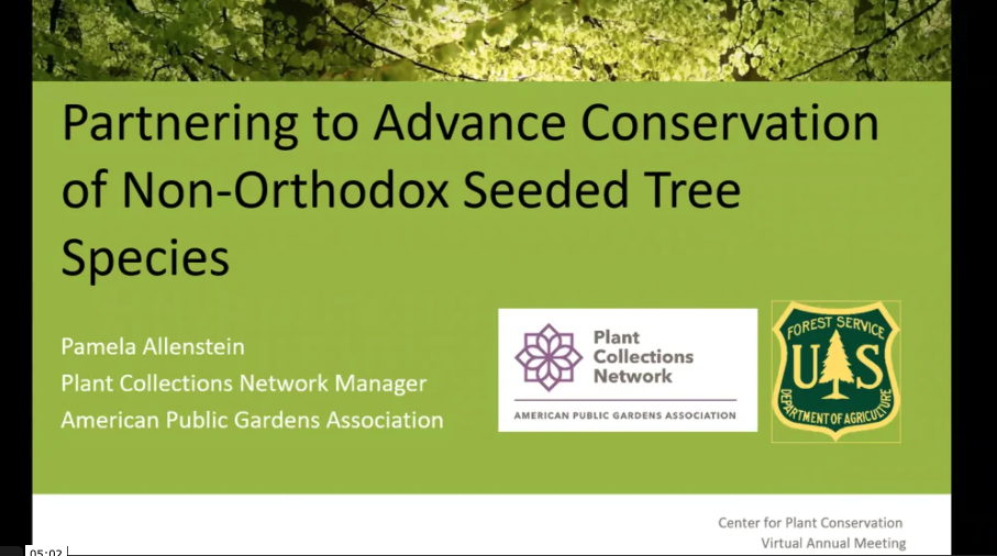 Screenshot from Partnering to Advance Conservation of Non-Orthodox Seeded Tree Species video