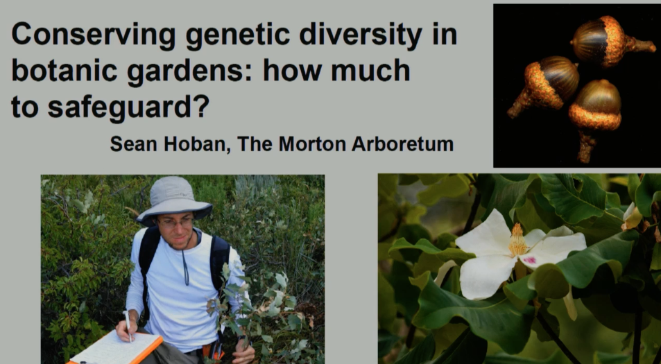 Screenshot from Conserving genetic diversity video