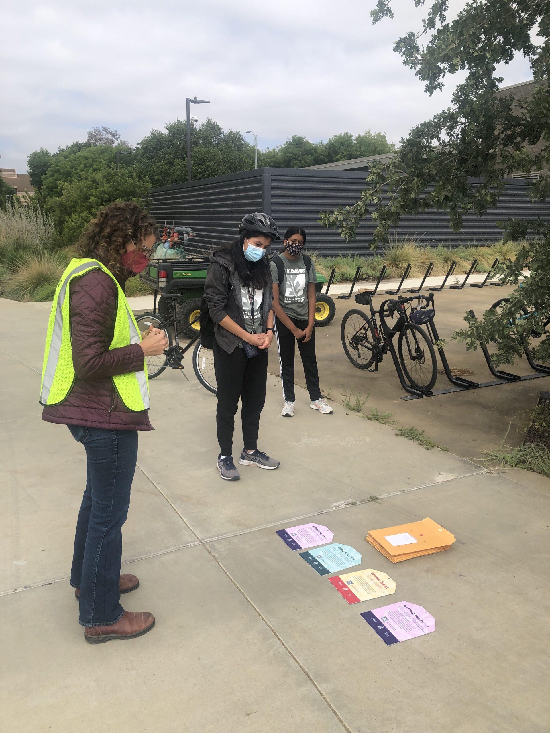 Image of UCDAPG interns tagging